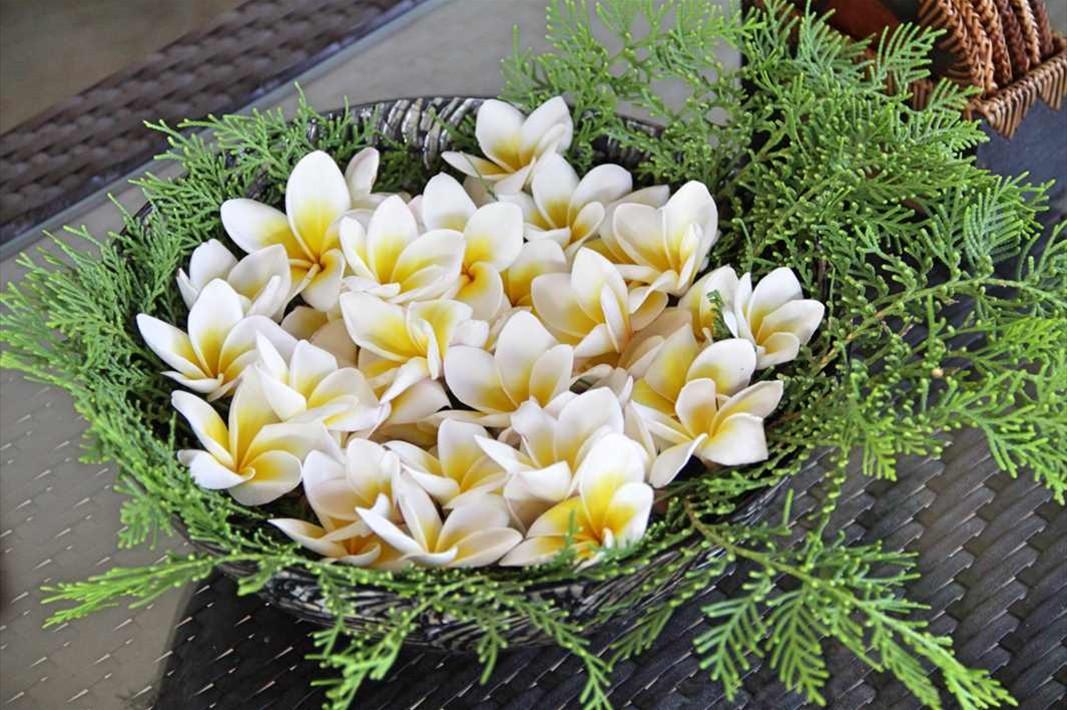 Flower jepun